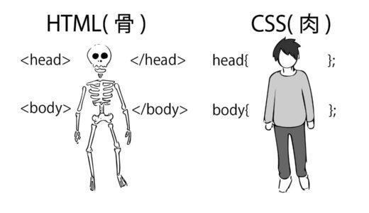 【超初心者向け】人に例えるHTML/CSS、Javascriptの役割とは?イラストで解説